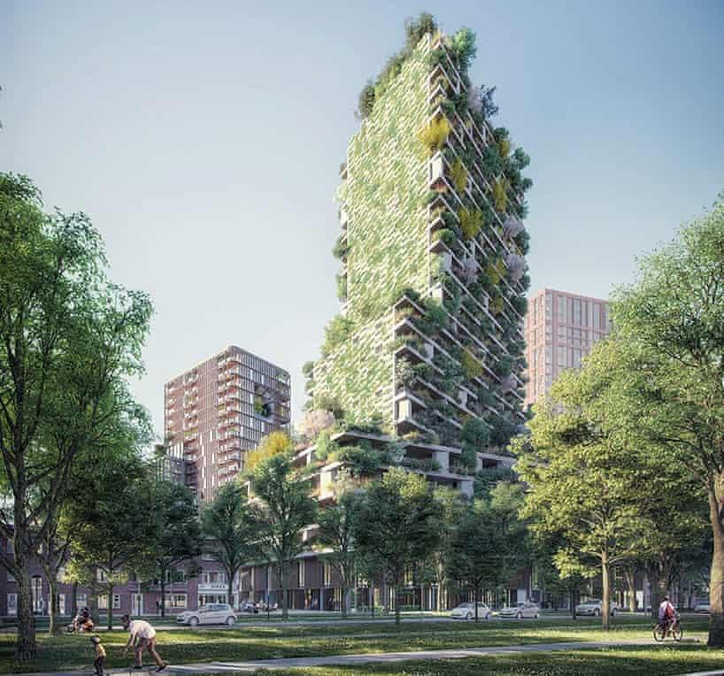 Bu şehirde yeşil çatı yapmak zorunlu