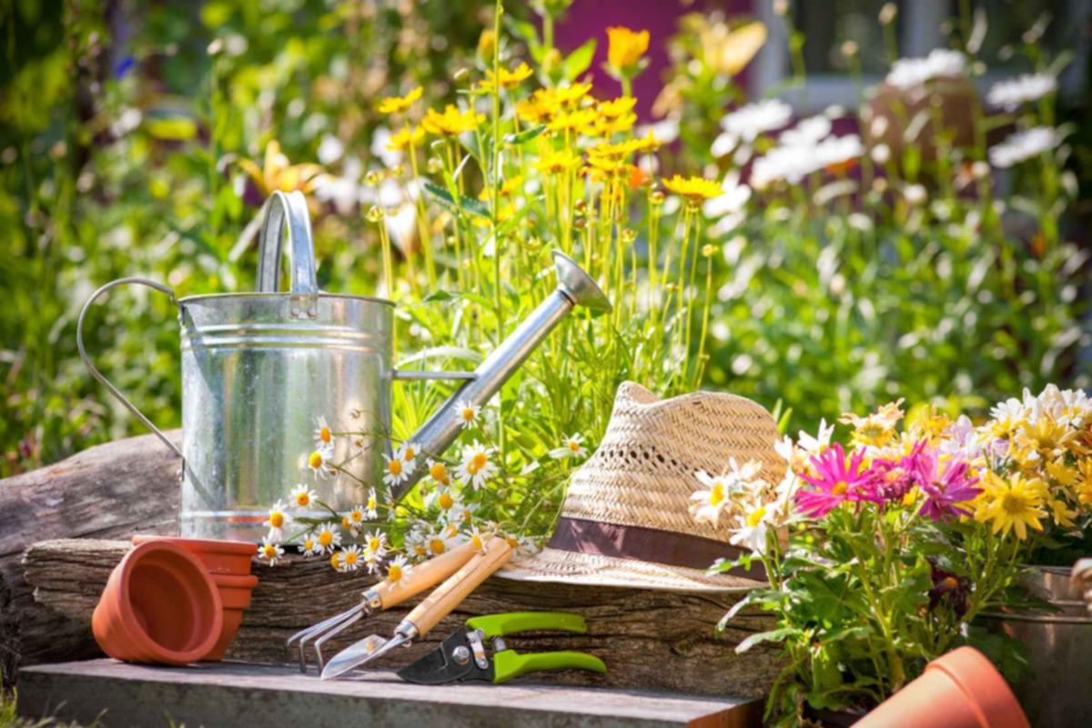 Bahçe Nasıl Kurulur