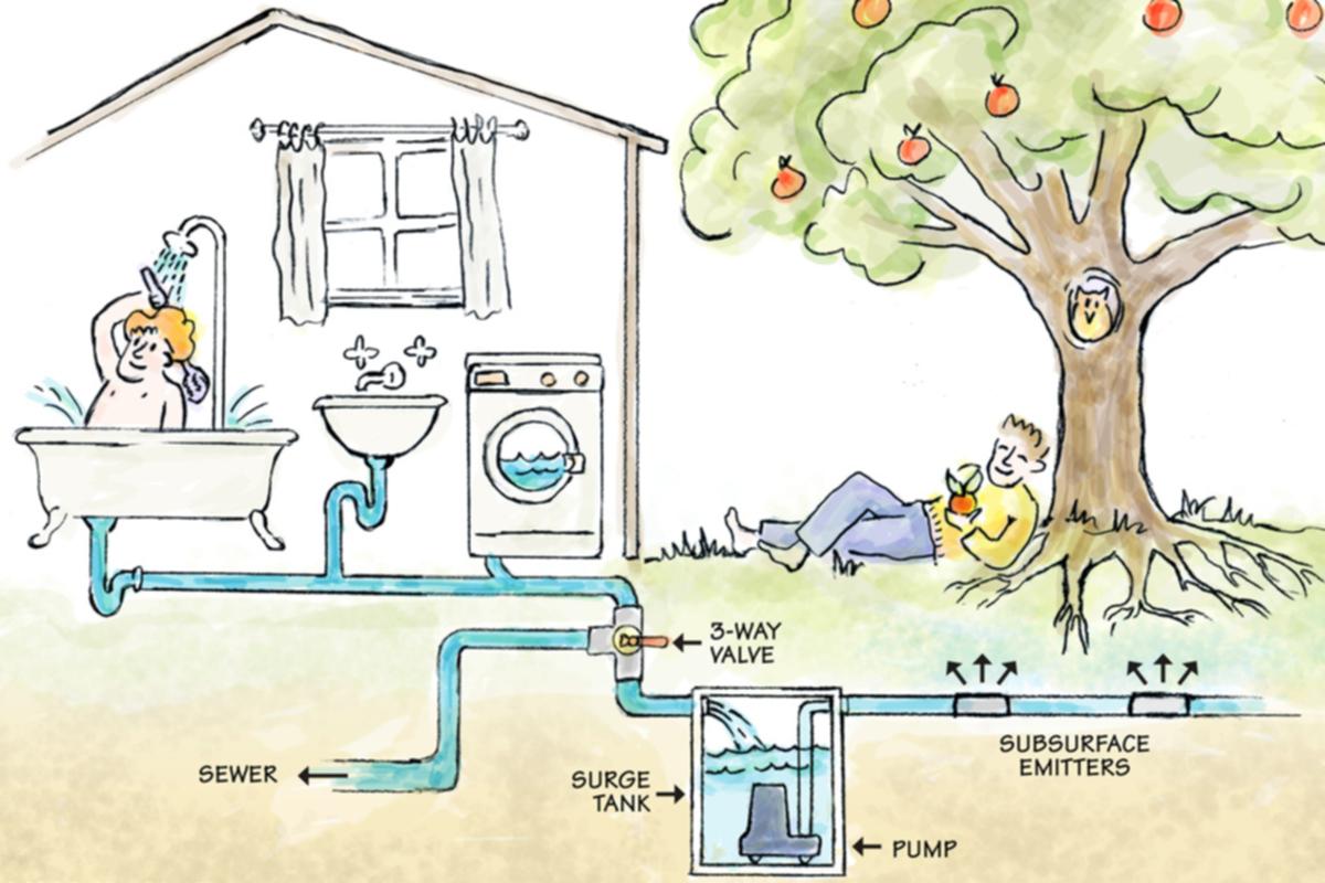 Gri Su Nedir ve Bahçede Nasıl Kullanılır?