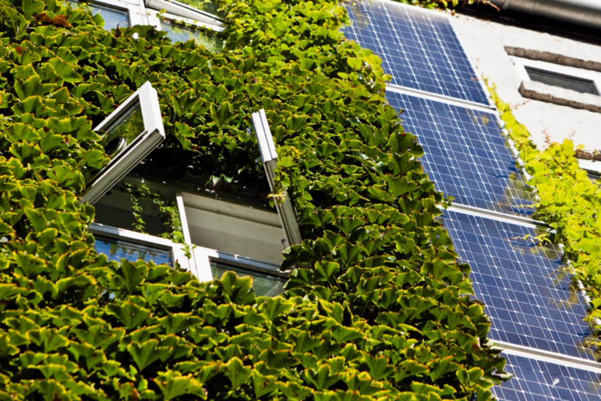 YEŞİL BİNALAR HAKKINDA HER ŞEY 2: Yeşil Bina Değerlendirme Ve Belgelendirme Sistemleri